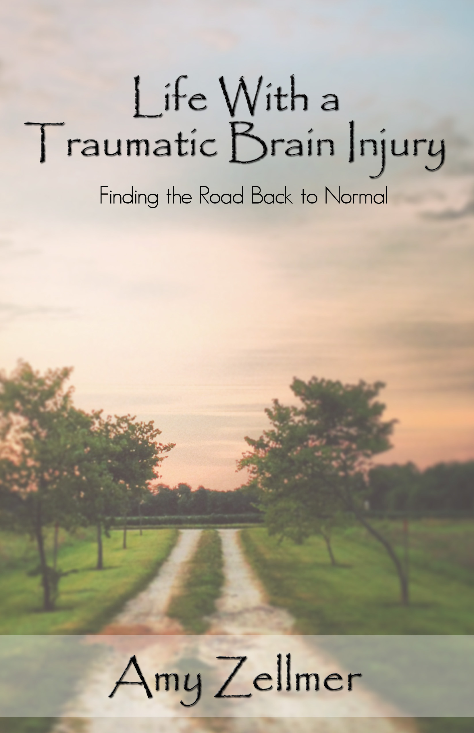 Life With a TBI {book}