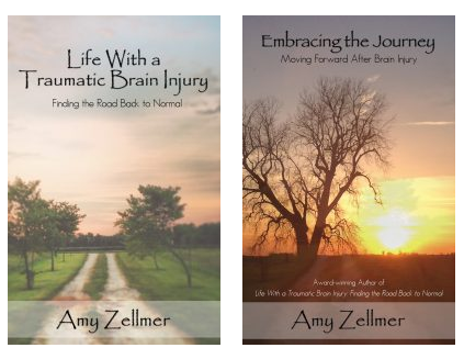 Amy Zellmer, Life With a Traumatic Brain Injury, Embracing the Journey, Brain injury, tbi, traumatic brain injury, concussion, pcs, book, author,